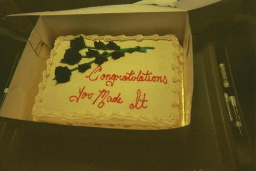 Training Cake